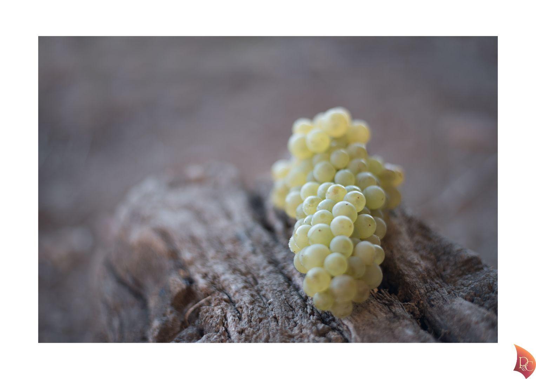 P&C Grappe Raisins Blanc Ecorce